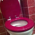 Eine rosarote Toilettenbrille mit geöffnetem Deckel © Susanne Böhling