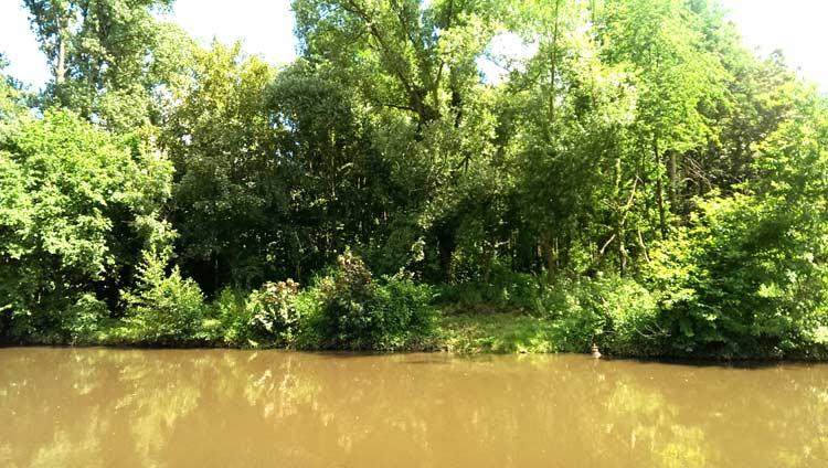 Die Erft in Grevenbroich führt Hochwasser