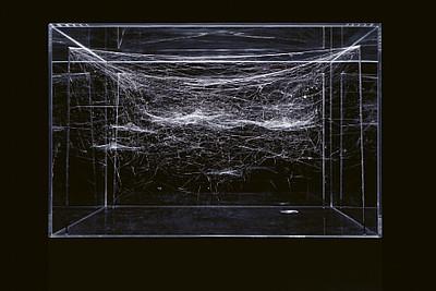 Nur die Kanten der Quader mit den Spinnennetzen sind durch Draht begrenzt