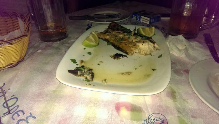 Er hat geschmeckt, der blaue Marlin