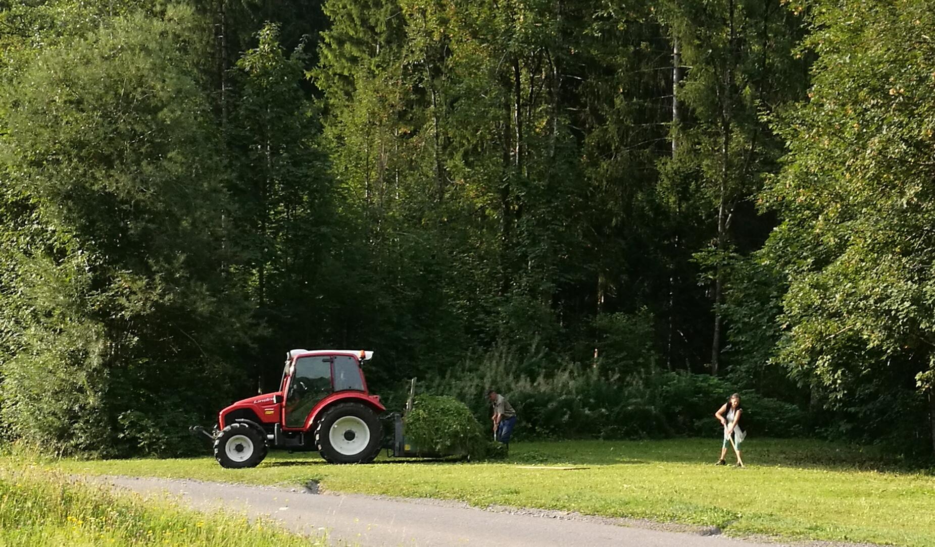 Ein Mann und eine Frau rechen Gras zusammen